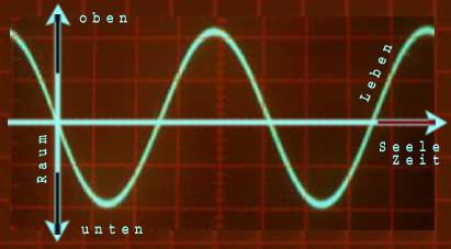 """LEBENS-SINUS (Illustration zum Text: """"die Varianten des Lebens"""")"""