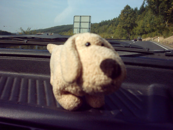 owlet: Mein treuer Fahrbegleiter