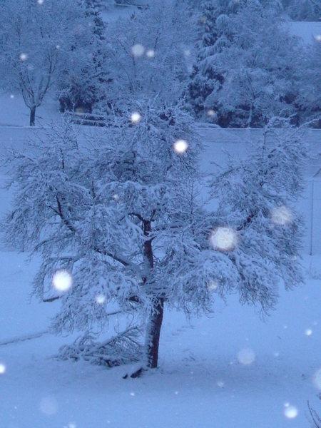 Es schneit ( unbearbeitet ) ..