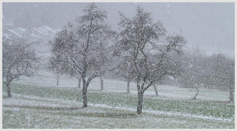 Schneetreiben .. ( 15.11.07 )