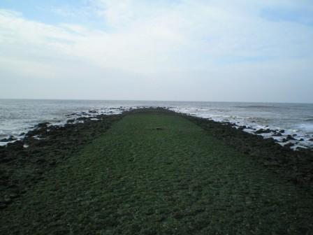 moto72: Die weite See