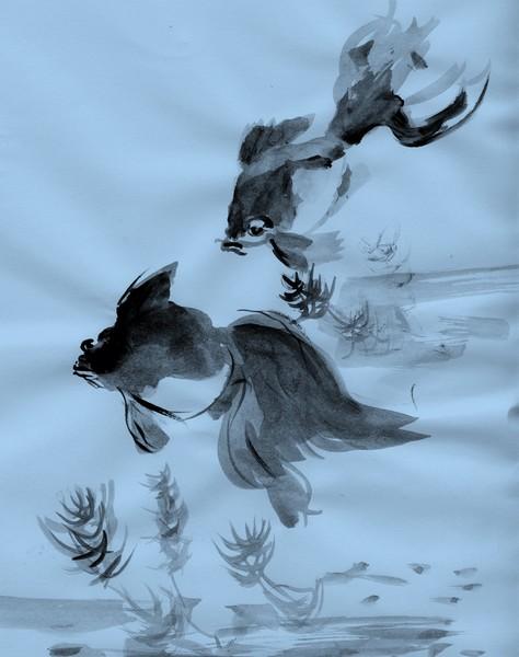 fortg.Übungen Goldfische