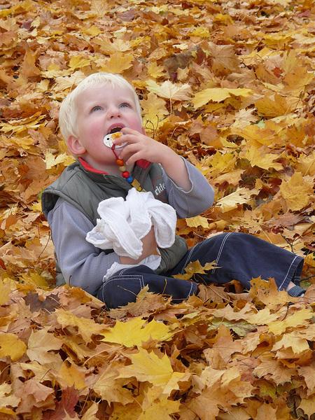 "Battle Art Fotografie ""Vertrauter Herbst"" | Mein Pflegekind"