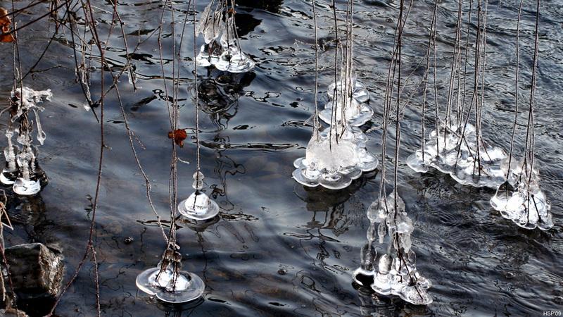 artos: Schwebende Eisblumen