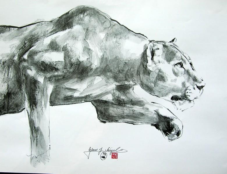 African Wild Life Anschleichende Löwin