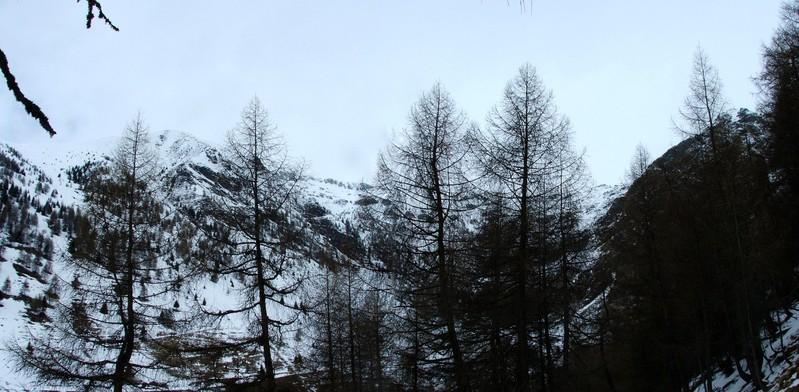 5. Panorama des Zielgebiets