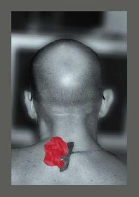 miles1234: portrait von hinten