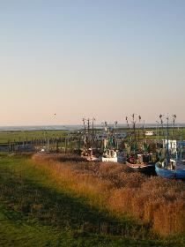 Kutterhafen an der Nordsee