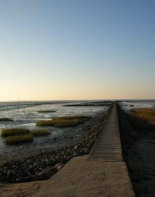 Steg im Watt - Nordsee 2005
