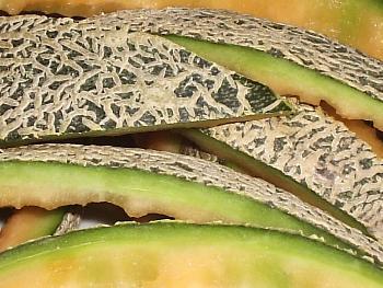 Melone