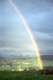 Regenbogen im Allgäu (1)