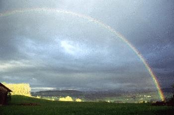 Regenbogen im Allgäu (2)