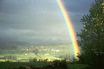 Regenbogen im Allgäu (3)