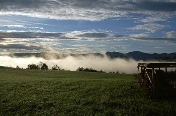 Allgäu - Tal im Nebel
