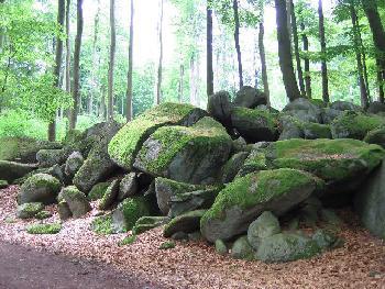 Felsenmeer im Odenwald - Moosfelsen