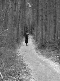 Winterliche Einsamkeit