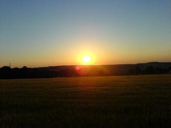 Feld und Sonnenuntergang mit das schönste Foto *find*