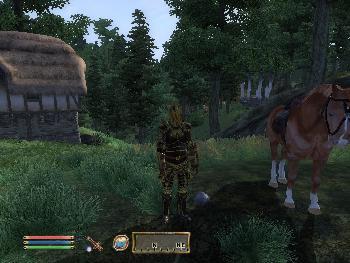 Erholungsurlaub bei Freunden in dichten Wäldern von Cyrodiil (1024x768)