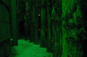 Am Landschaftspark bei Nacht