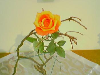 Altarblume Im Gemeindesaal, wo die Freizeitgruppe der geistig Behinderten ist