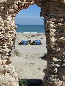 Tunesien II 09/06