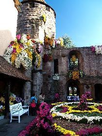 Storchenturm in Lahr, die einzige Stadt die im Nov. eine Freilandblumenschau veranstaltet