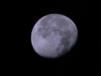 Mond 1