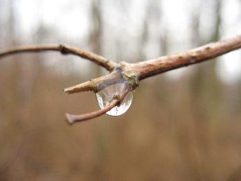 Seelensturm: Regentropfen