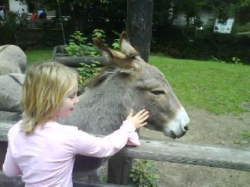 wistful: Meine Tochter mit dem Esel