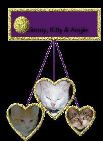 Jimmy, Kitty und Angie