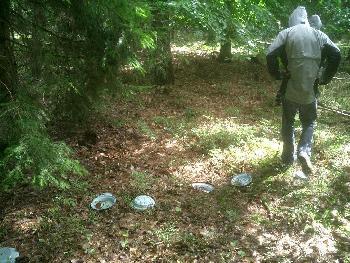 #11 Nach 3h Wanderung kreuz und quer durch den Wald, vorbei an alten Tellern...