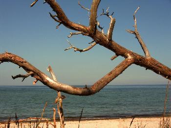Reglindis: Blick aufs Meer