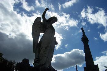 °Partyschaum°: Dublin September 2005 Am Stadtrand von Dublin : Ein alter Friedhof