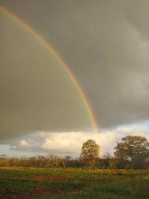 Regenbogen über dem Erdbeerfeld (rechts)