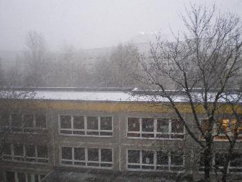Gestern_Der erste Schnee (10.11.`07)