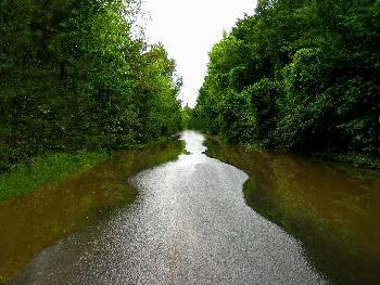 überflutete Strasse wird zur ...Figur ?