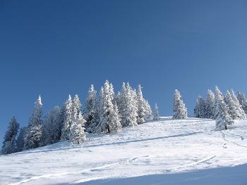 Winter wie im Bilderbuch!