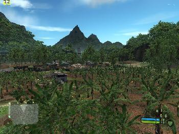 4. Palmenplantage?
