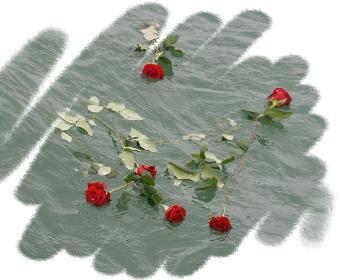 Blumen zum Abschied (Seebegräbnis)