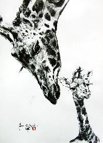 Das wilde Afrika 16