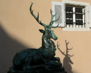 Schleppjagd auf Schloss-Kranichstein 38