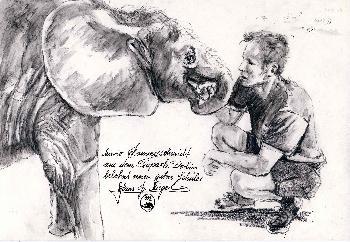Tierpfleger mit jungem Elefanten Tierpark Berlin