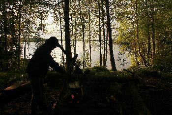 Dano Mansebäcken im Birkenwäldchen