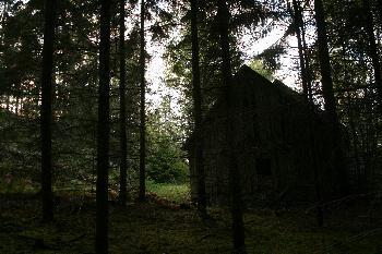 verlassener Hof im Wald, Nähe Egersknatten (Schweden)