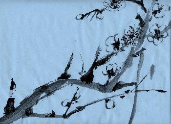 fortg.Übungen Plumtree 02