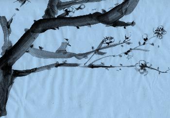 fortg.Übungen Plumtree 03