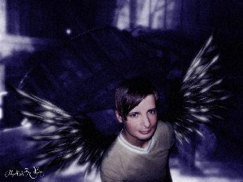 Africola: Dark Angel