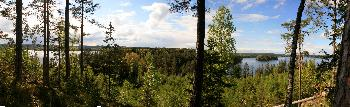 Panorama Lelang
