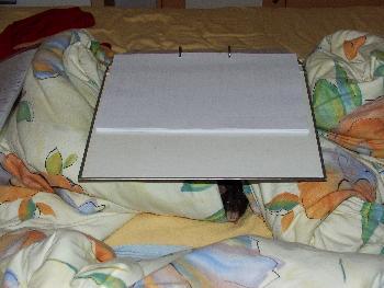 Broscha hat ein Nest im Bett gefunden