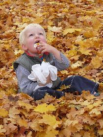 Battle-Art-Fotografie - Vertrauter Herbst #2